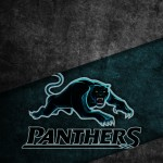 lock-panthers2
