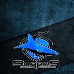 lock-sharks2